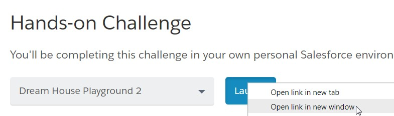 Salesforce Playground - Hands-On Challenge