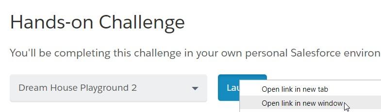 Salesforce Playground - Hands-On Challenge