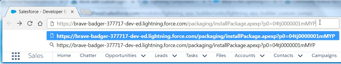 Salesforce Playground - Paste URL