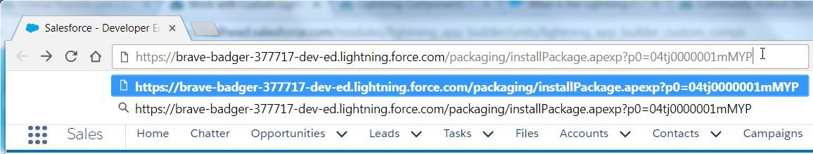 Salesforce Playground - Paste URL